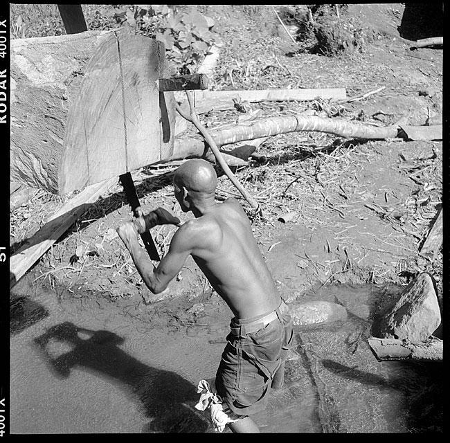 Lumber jacks 2