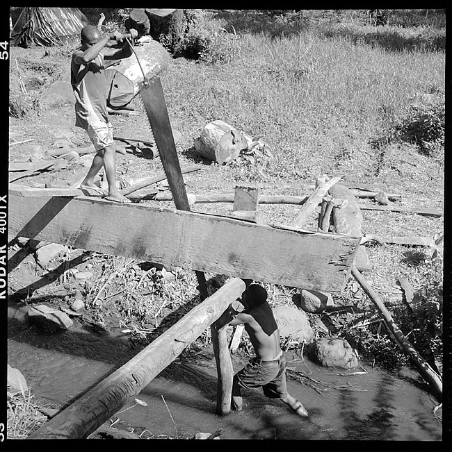 Lumber jacks 1