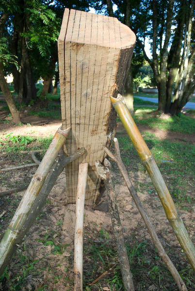 Lumber jacks 3